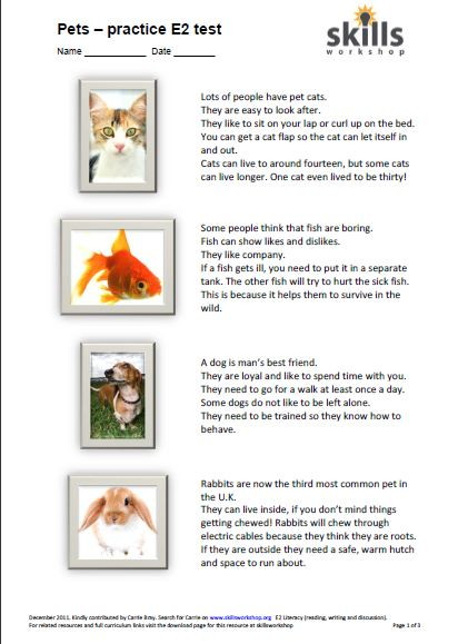 Practice for E2 exams with a pet theme. Reading comprehension ...